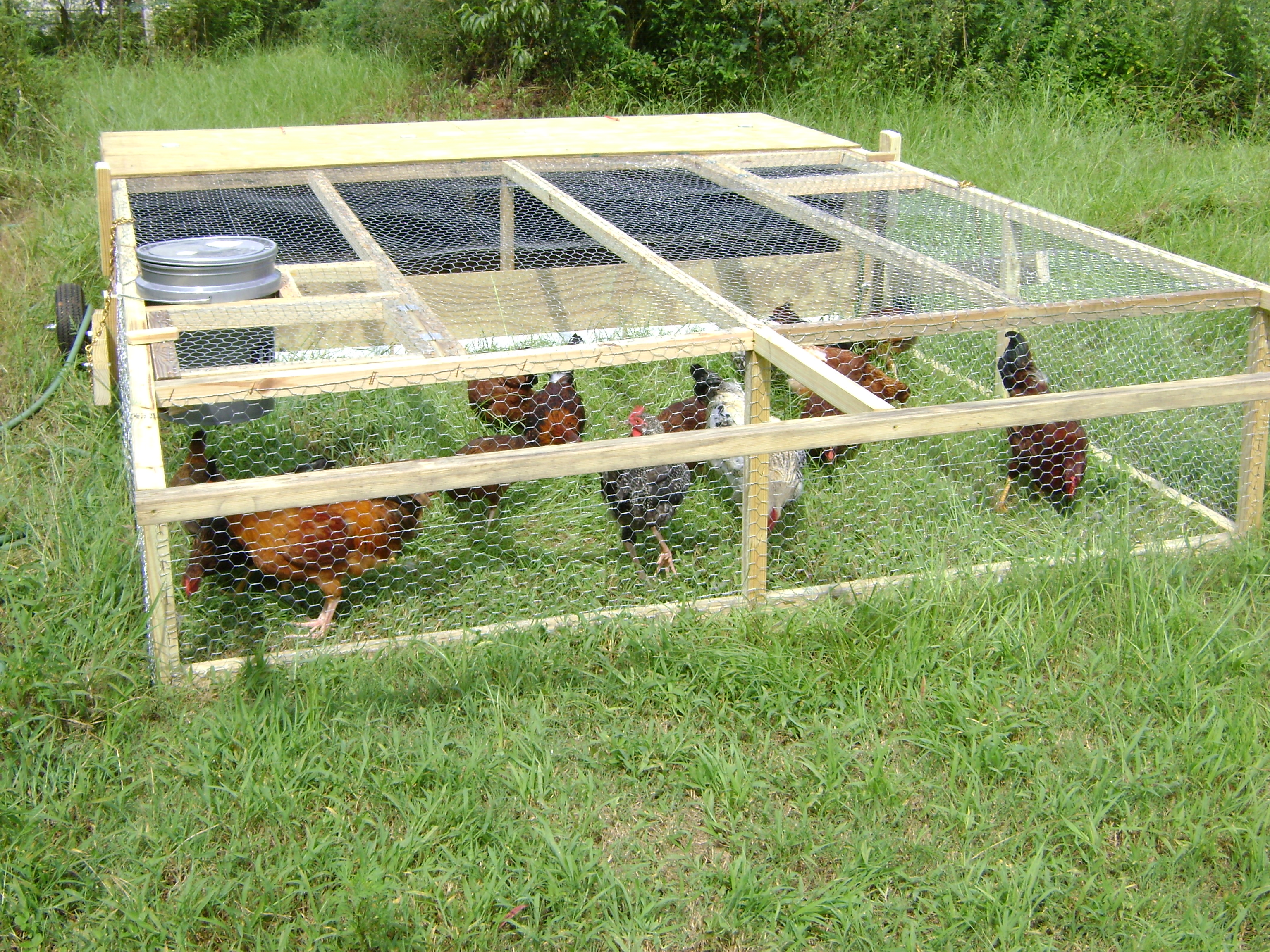 Related keywords suggestions for movable chicken coops for Mobile chicken coop plans